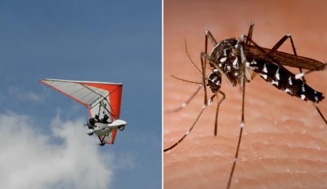 НА МОРЕТО   Три дни ще пръскат срещу комари в Бургас от въздуха